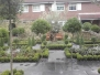 Inner city topiary garden
